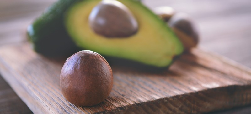 How to successfully grow Avocado tree from seed?