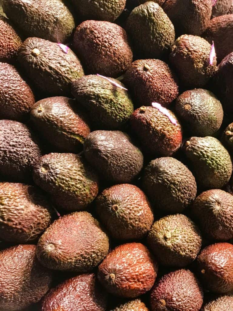 how healthy are avocados