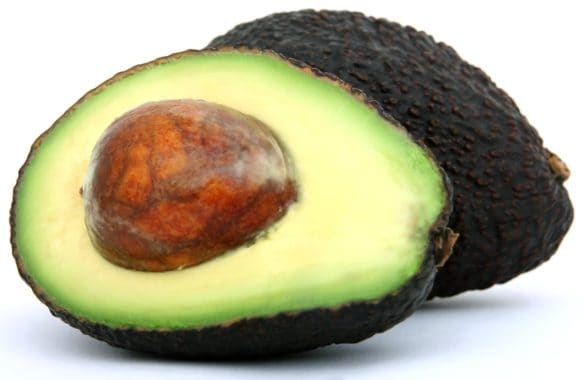 Does avocado have protein