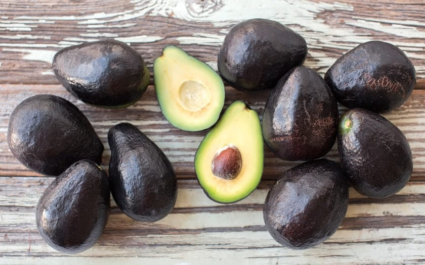 different types of avocado