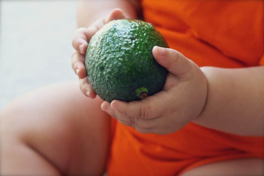 Avocado for Baby – Yes or No? 1