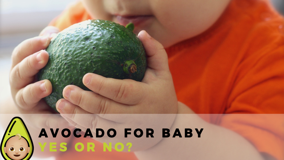Avocado for Baby – Yes or No?