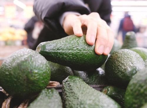 avocado cartel